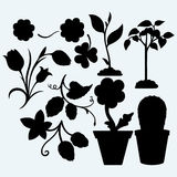Set plants. Handful of the ground and plant, clovers, tulips, hops, and flowers in pots.  on blue background. Vector silhouettes Royalty Free Stock Image
