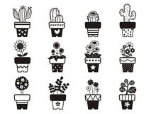Set of plants in pots Stock Image
