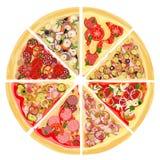 Set plasterki różnorodność pizza pojedynczy białe tło Kiełbasy, mięsa, owoce morza, świeżych i kiszonych warzywa, royalty ilustracja