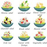 Set of plates with various world cuisine salads color flat icons. For web and mobile design Stock Images