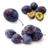 Set of plums Stock Images