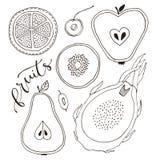 Set pokrojone owoc Apple, bonkreta, pitaya, kiwi, pomarańcze linia rysująca na białym tle również zwrócić corel ilustracji wektor royalty ilustracja