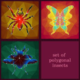 Set of polygonal insects Stock Photo