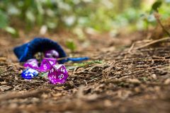 Polyhedral dice in a woodland environment. A set of polyhedral dice used for role playing games such as Dungeons & Dragons, the dice are used to determine how Royalty Free Stock Images