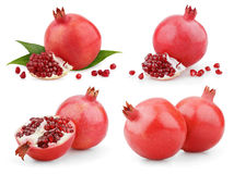 Set of pomegranate fruits royalty free stock images