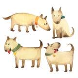 Set popielaci psy w dzieciaka stylu odizolowywającym na białym tle fotografia stock