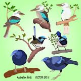 A set of popular Australian birds on a green background, stock illustration