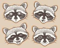 Set of positive emotions cartoon raccoon Stock Photos