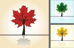 Set postcards, stylized maple Stock Images