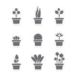 Set Of Pot Plants Black Symbol Stock Photo