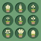 Set Of Pot Plants Symbol Stock Images