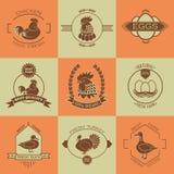 Set of poultry farm logo, emblem. Chicken, turkey Stock Photography