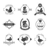 Set of poultry farm logo, emblem. Chicken, turkey, goose, duck. Royalty Free Stock Photography