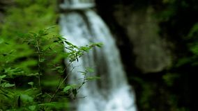 Set of pre-cutted videos of waterfall in a woodland stock video