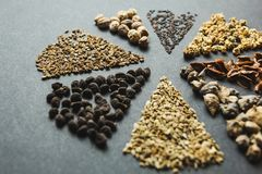 Set of premium seeds on a black background, concept stock images