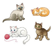 Set of pretty vector kittens Royalty Free Stock Photo