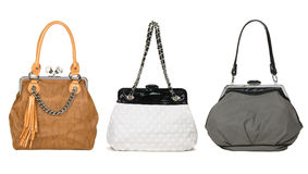 Set of pretty women bags Stock Photos