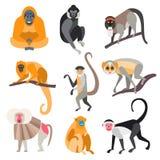 Set of Primates and Monkeys. Vector Illustration Royalty Free Stock Photo