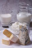 Set of products brie, blue cheese, cottage cheese Stock Images