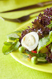 Set of products. Dish of boiled eggs and lettuce stock images