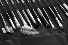 Set  professional cosmetic brushes in black case background. Stock Photography
