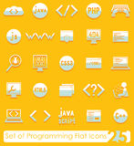 Set of programming icons Stock Photography