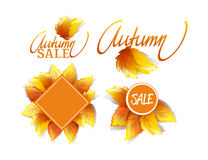Set Of Promo Labels. Vector Bright Autumnal Set Of Promo Labels For Sales And Actions Isolated On White Background Royalty Free Stock Photo