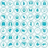 Set proste zwierzę ikony Obraz Royalty Free