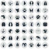 Set proste zwierzę ikony Fotografia Royalty Free