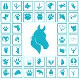 Set proste zwierzę ikony Zdjęcia Royalty Free