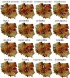Set Provinzen in Polen Stockfotografie