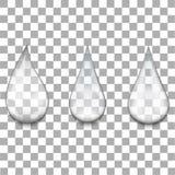 Set przejrzysta woda opuszcza na przejrzystym tle wektor ilustracja wektor