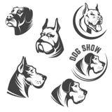 Set psich głów ikony odizolowywać na białym tle wyobrażalny ilustracja wektor