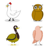 Set ptaka wektoru charakter royalty ilustracja