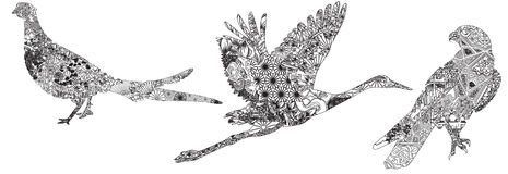 Set ptaki w wzorach Obraz Royalty Free