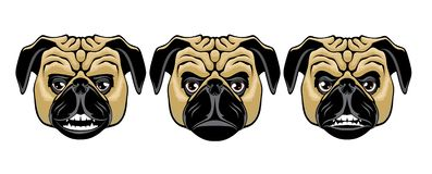Set of pug heads with different emotions royalty free illustration