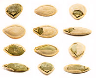 Set of pumpkin seeds isolated Royalty Free Stock Photos