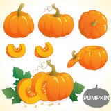 Set of pumpkin in various styles vector format Stock Images