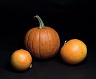 Set of pumpkins. Royalty Free Stock Photos