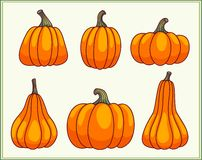 Set of pumpkins. Set of six pumpkins in a green frame. Cartoon illustration Royalty Free Stock Photography