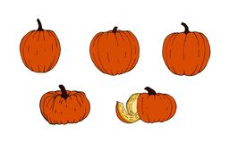 Set of pumpkins for Halloween. Funny faces. Autumn holidays. Vector. stock image