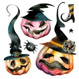 A set of pumpkins for Halloween in high black hats. Multicolored pumpkins with carved mugs in big black hats with flowers and spiders stock illustration