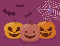 Set pumpkins halloween with spider and bats. Vector illustration design royalty free illustration