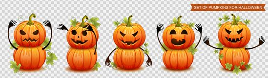 Set of pumpkins for Halloween. Vector. Illustration vector illustration