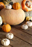 set of pumpkins Stock Image