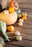 Set of pumpkins Royalty Free Stock Images