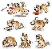 Set of puppy fun. Freehand drawing Stock Images