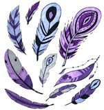 Set of purple bird feathers isolated on white. marker art. concept for cards, , congratulations, branding. royalty free illustration