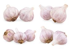 Set of purple garlics Royalty Free Stock Photo