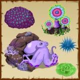 Set purpurowa ośmiornica i podwodna roślinność Zdjęcia Royalty Free